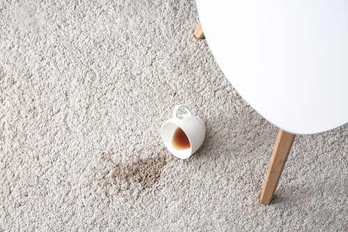 How do you get old coffee stains out of a carpet